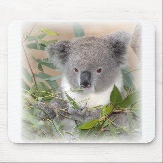 Cojín de ratón del oso de koala tapetes de raton