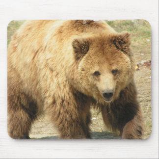 Cojín de ratón del oso grizzly tapetes de ratón