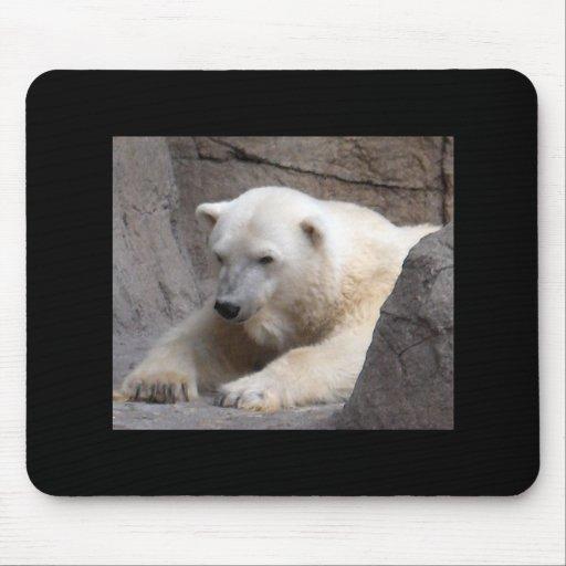 Cojín de ratón del oso polar tapete de ratones