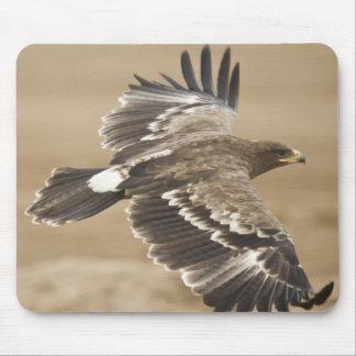 Cojín de ratón del pájaro de Eagle del vuelo Alfombrillas De Raton
