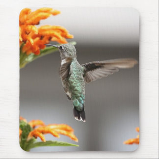 Cojín de ratón del pájaro del tarareo en vuelo tapete de ratones