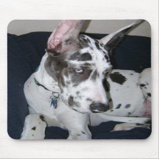 Cojín de ratón del perrito de great dane del Harle Alfombrilla De Ratones