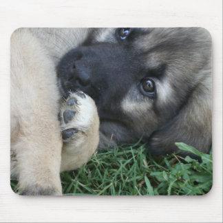 Cojín de ratón del perrito del pastor alemán tapetes de ratones