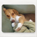 Cojín de ratón del perrito del Snuggle Alfombrillas De Ratón