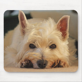Cojín de ratón del perro de Westie/estera hermosos Alfombrillas De Ratones