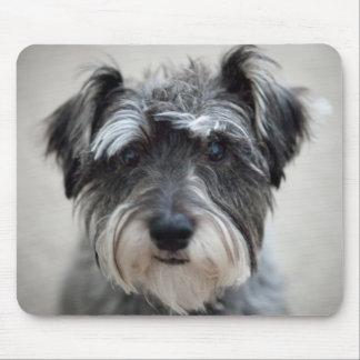 Cojín de ratón del perro del Schnauzer Alfombrilla De Ratones
