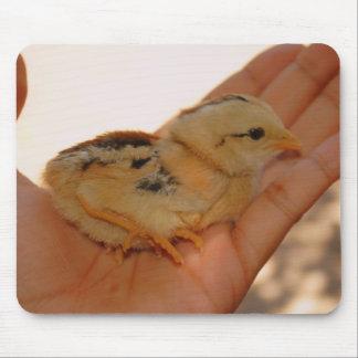 Cojín de ratón del pollo del bebé alfombrillas de ratón