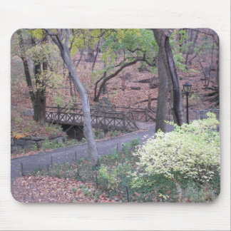 Cojín de ratón del puente del Central Park Tapetes De Ratones