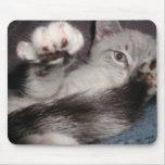 Cojín de ratón del ratón de n del gato ' tapetes de ratón