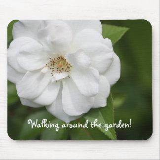 Cojín de ratón del rosa blanco tapete de ratón