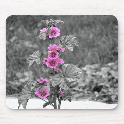 Cojín de ratón del rosa salvaje tapetes de ratones