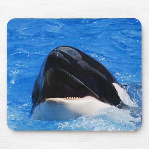 Cojín de ratón del sonido de la ballena mouse pad