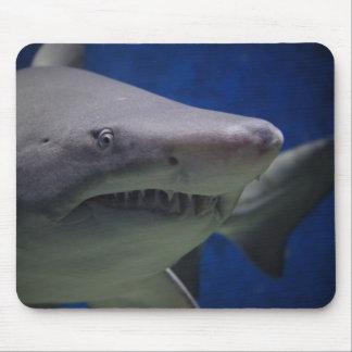 Cojín de ratón del tiburón mousepads