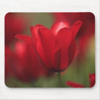 Cojín de ratón del tulipán de la mañana alfombrillas de ratón