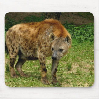 Cojín de ratón del vagabundeo del Hyena Tapetes De Ratón