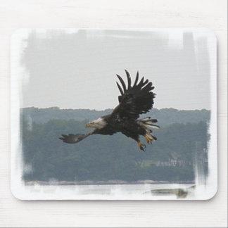 Cojín de ratón del vuelo de Eagle Tapetes De Raton