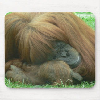 Cojín de ratón el dormitar del orangután tapete de ratón