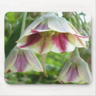 Cojín de ratón: Flor del allium Tapetes De Raton