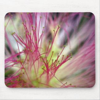 Cojín de ratón - flor del árbol de seda (árbol del mousepad