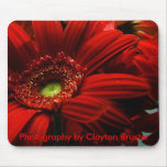 Cojín de ratón -- Floral rojo Alfombrilla De Ratones