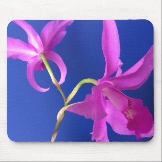 Cojín de ratón, flores rosadas de la orquídea tapete de ratones