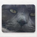 Cojín de ratón fresco de la cara del gato tapetes de raton