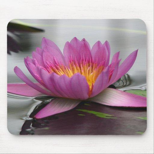 Cojín de ratón gigante de Lotus Alfombrillas De Ratón