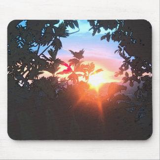 Cojín de ratón hermoso de la puesta del sol