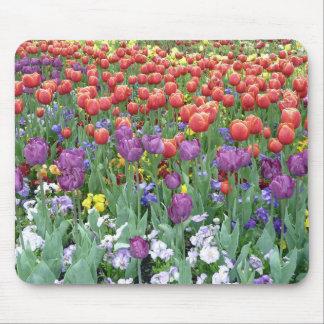 Cojín de ratón - jardín del tulipán alfombrilla de raton