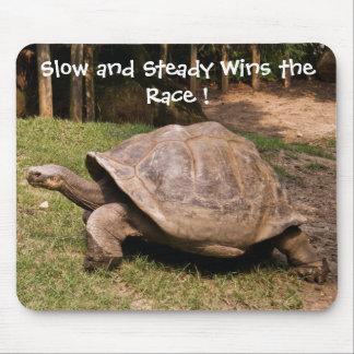 Cojín de ratón lento y constante de la tortuga alfombrillas de ratón