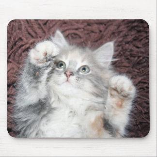 cojín de ratón lindo del gatito tapete de ratón