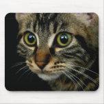 Cojín de ratón lindo del gato tapetes de ratón