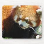 Cojín de ratón lindo del oso de panda roja tapete de raton