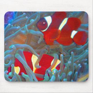 Cojín de ratón marrón de Clownfish Alfombrilla De Ratones