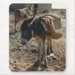 Cojín de ratón marroquí de la mula alfombrilla de ratones