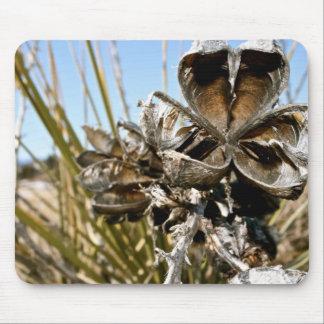 Cojín de ratón muerto de la flor del cactus tapetes de ratones