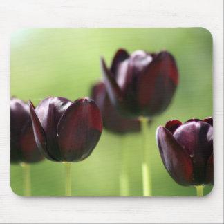 Cojín de ratón negro del tulipán tapete de ratones