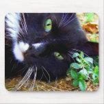 Cojín de ratón negro y blanco del gato de la muñec tapetes de ratones