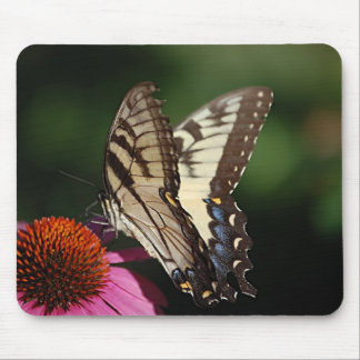 Cojín de ratón occidental de Swallowtail del tigre Mouse Pads