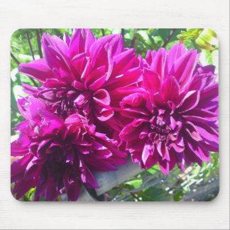 Cojín de ratón púrpura de la flor de la dalia tapetes de raton