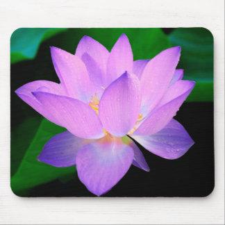 Cojín de ratón púrpura de la flor de Lotus Tapetes De Ratones