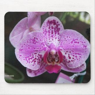 Cojín de ratón púrpura de la orquídea alfombrilla de raton