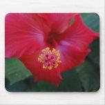 cojín de ratón rojo de la flor tapetes de raton