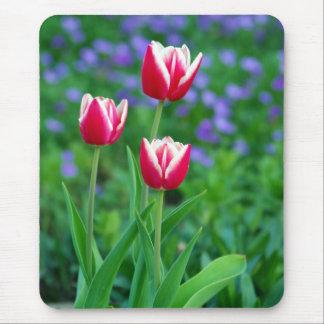 Cojín de ratón rojo de los tulipanes tapetes de ratón