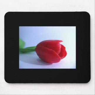 Cojín de ratón rojo del tulipán alfombrillas de ratón