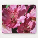 Cojín de ratón rosado de la flor del Alstroemeria Tapete De Ratón