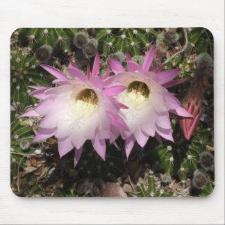 Cojín de ratón rosado de la flor del cactus alfombrilla de ratón