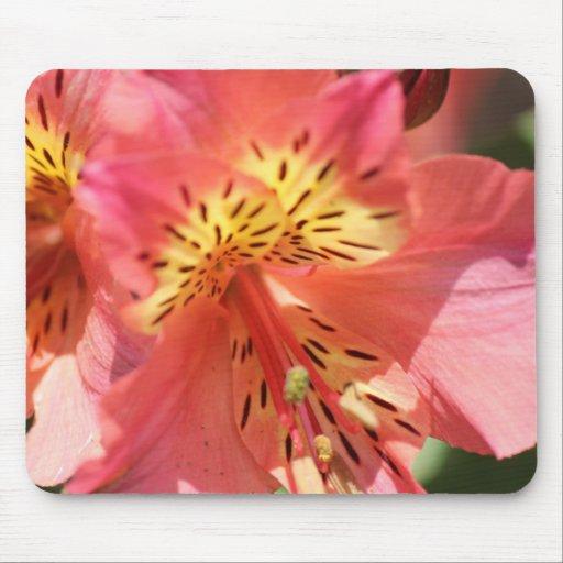 cojín de ratón rosado de la flor tapete de raton