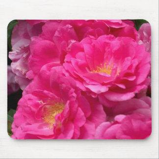 Cojín de ratón rosado de los rosas tapetes de ratón