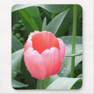 Cojín de ratón rosado de los tulipanes tapete de ratones